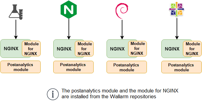 Module for NGINX Installation Options